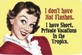 Hot Flashes Capture