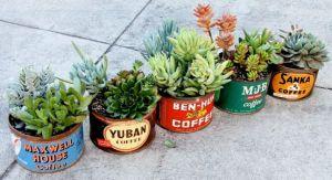 Quick Fixes for Garden Envy