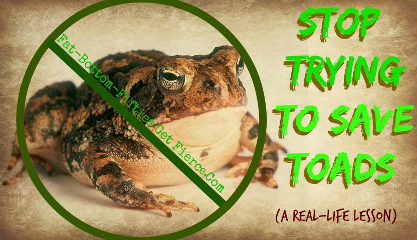 Stop Trying to Save Toads