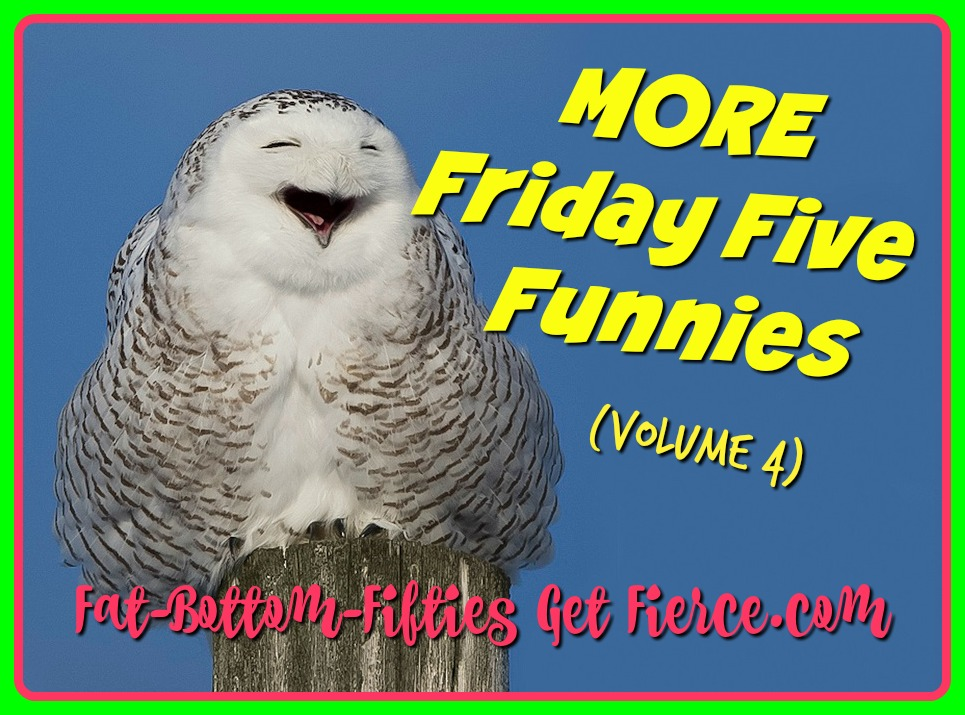More Friday Five Funnies (Vol 4)
